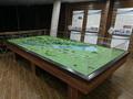 Balaton terepasztal